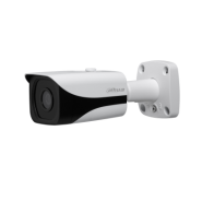 IPC-HFW4830E-S 1